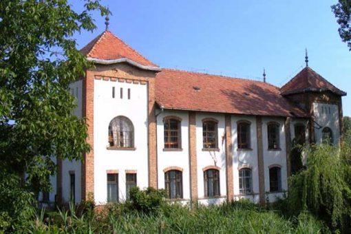 Szarvas-08-bekesszentandrasi_szonyegszovo-600x400w